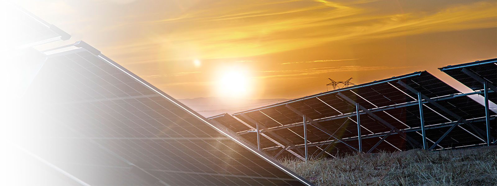 SOLAR PLANTSPROJECT DEVELOPMENT